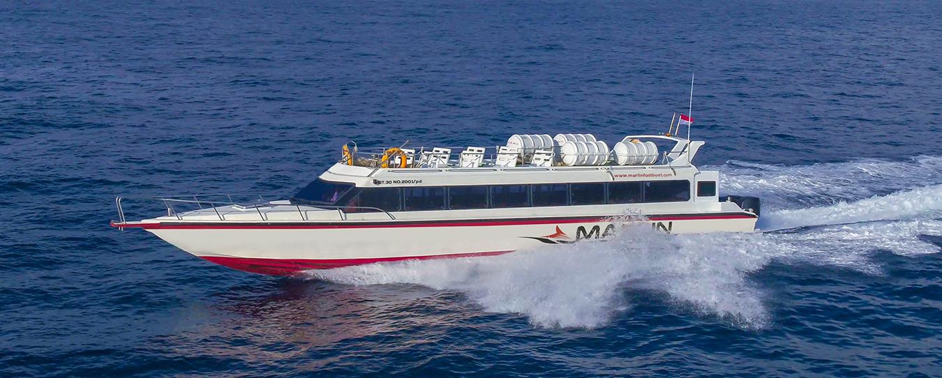 Marlin Fast Boats Organizer